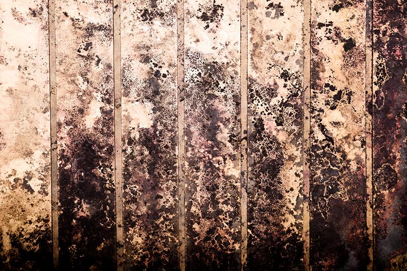 Block Spots and Black Mold
